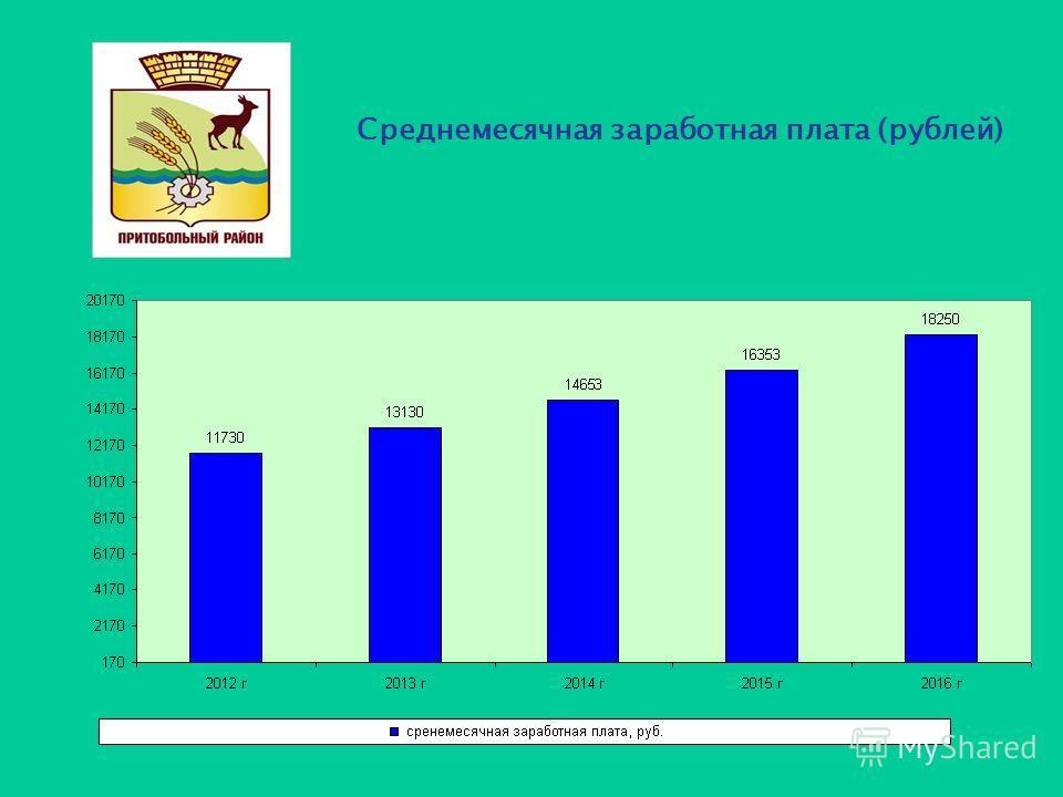 Среднемесячная заработная плата (рублей)