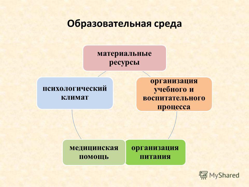 Образовательная среда материальные ресурсы организация учебного и воспитательного процесса организация питания медицинская помощь психологический климат