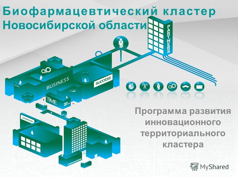 Биофармацевтический кластер Новосибирской области Программа развития инновационного территориального кластера