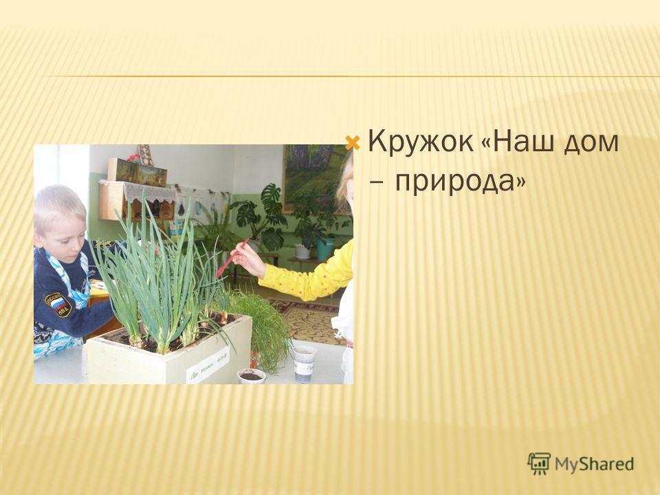 Кружок «Наш дом – природа»