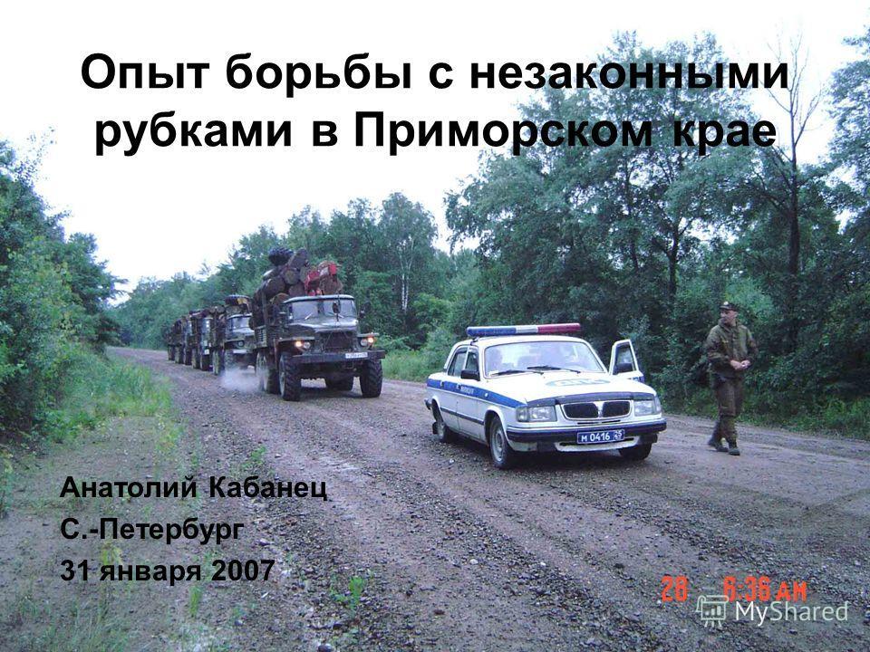 Опыт борьбы с незаконными рубками в Приморском крае Анатолий Кабанец С.-Петербург 31 января 2007