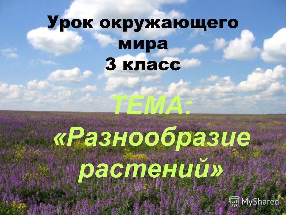 Урок окружающего мира 3 класс ТЕМА: «Разнообразие растений»