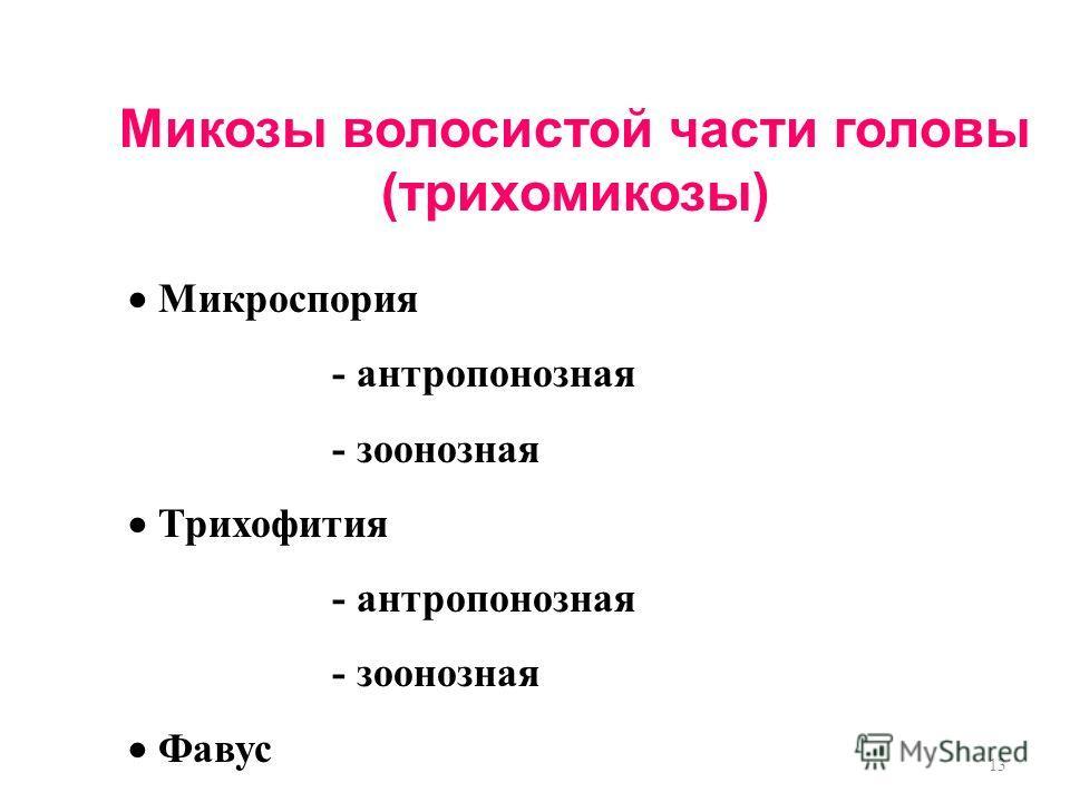 13 Микозы волосистой части головы (трихомикозы) Микроспория - антропонозная - зоонозная Трихофития - антропонозная - зоонозная Фавус