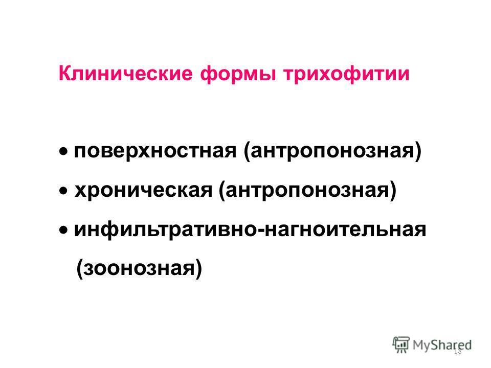 18 Клинические формы трихофитии поверхностная (антропонозная) хроническая (антропонозная) инфильтративно-нагноительная (зоонозная)