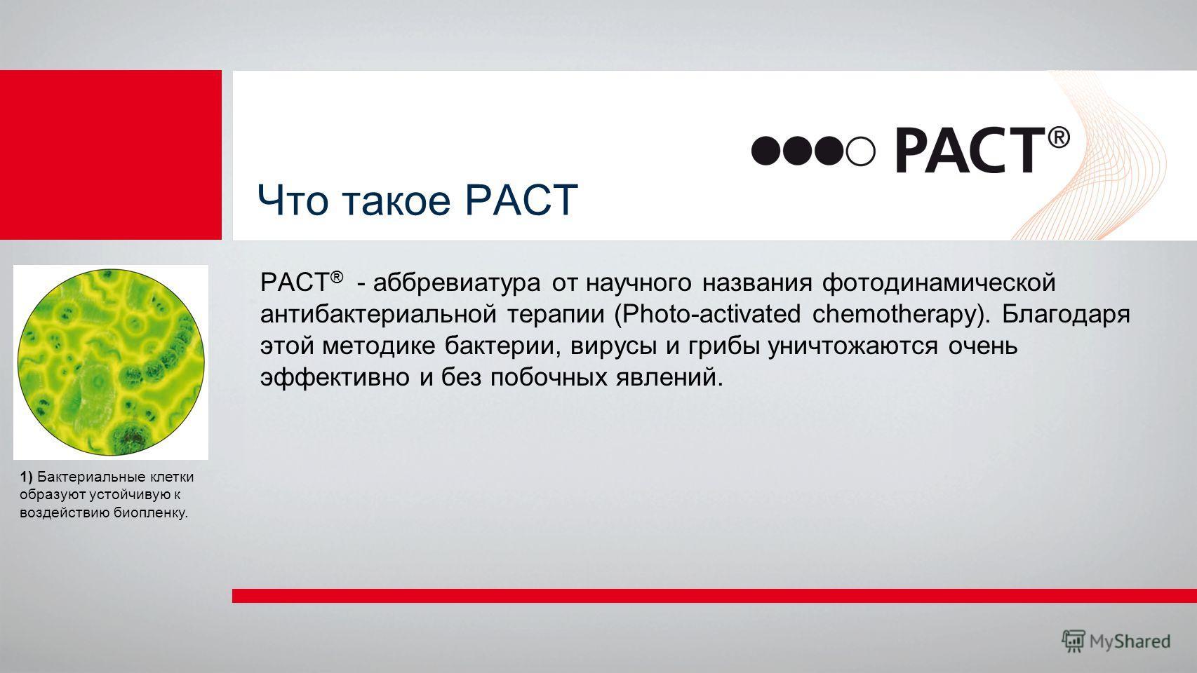 Что такое РАСТ PACT ® - аббревиатура от научного названия фотодинамической антибактериальной терапии (Photo-activated chemotherapy). Благодаря этой методике бактерии, вирусы и грибы уничтожаются очень эффективно и без побочных явлений. 1) Бактериальн