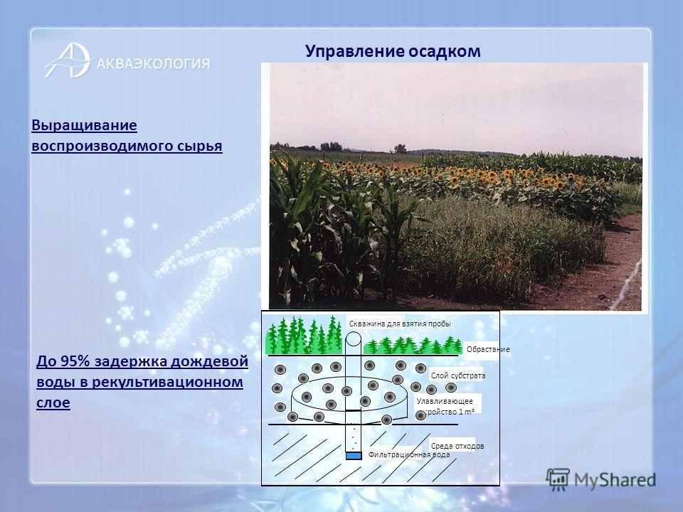 Управление осадком Выращивание воспроизводимого сырья До 95% задержка дождевой воды в рекультивационном слое