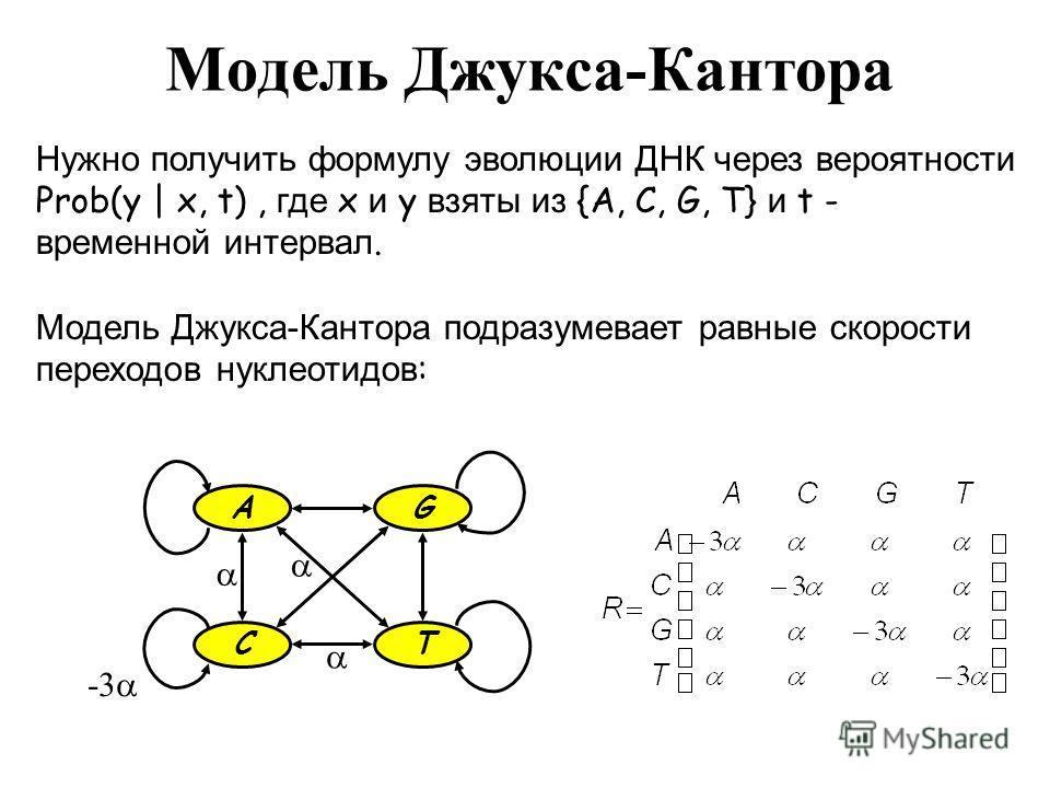 Модель Джукса-Кантора Нужно получить формулу эволюции ДНК через вероятности Prob(y | x, t), где x и y взяты из {A, C, G, T} и t - временной интервал. Модель Джукса-Кантора подразумевает равные скорости переходов нуклеотидов : GA TC -3