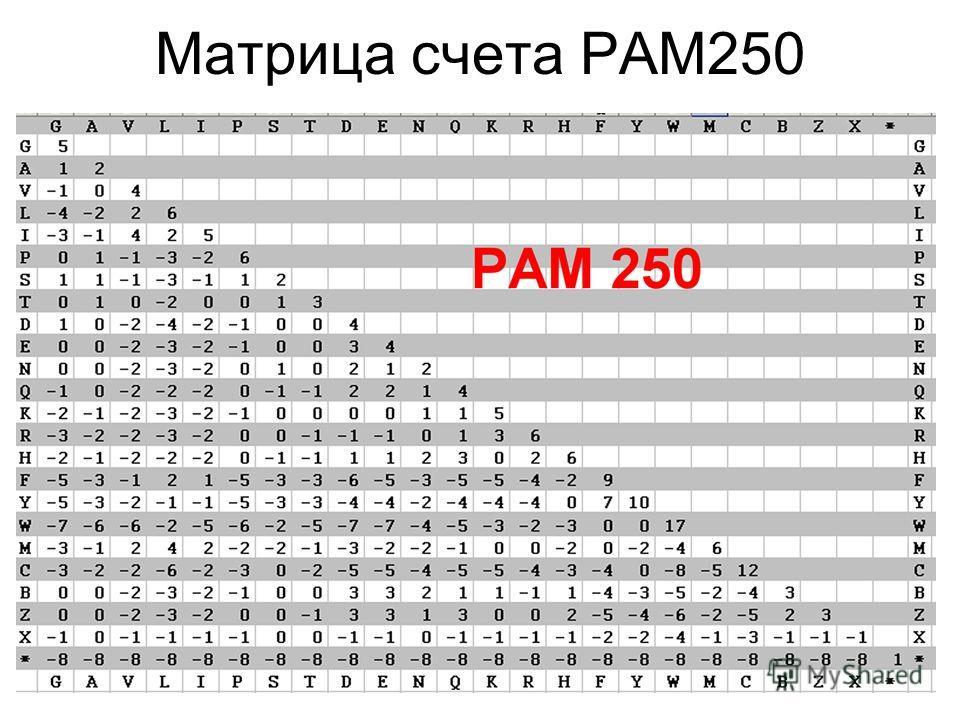 Матрица счета PAM250