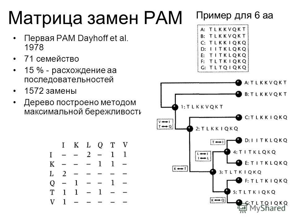 Первая PAM Dayhoff et al. 1978 71 семейство 15 % - расхождение аа последовательностей 1572 замены Дерево построено методом максимальной бережливости. Пример для 6 аа Матрица замен PAM
