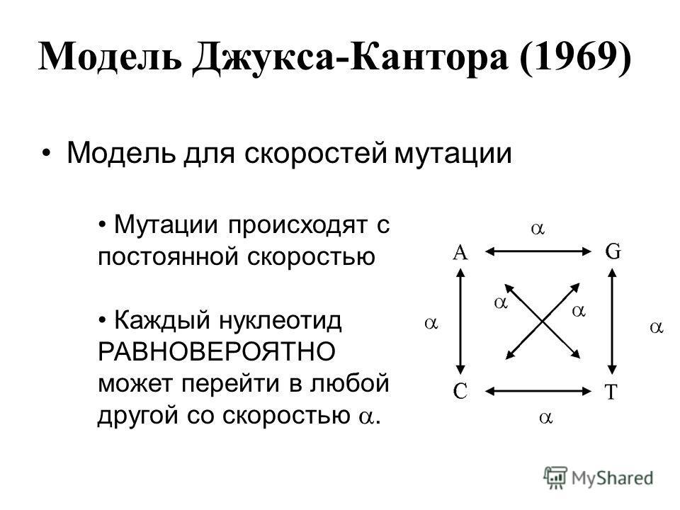 Модель Джукса-Кантора (1969) Модель для скоростей мутации Мутации происходят с постоянной скоростью Каждый нуклеотид РАВНОВЕРОЯТНО может перейти в любой другой со скоростью.