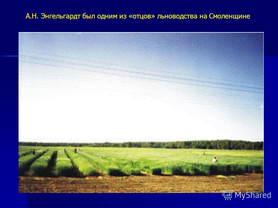 А.Н. Энгельгардт был одним из «отцов» льноводства на Смоленщине