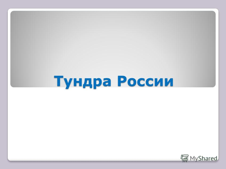 Тундра России