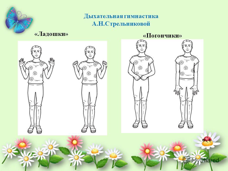 Дыхательная гимнастика А.Н.Стрельниковой «Ладошки» «Погончики»