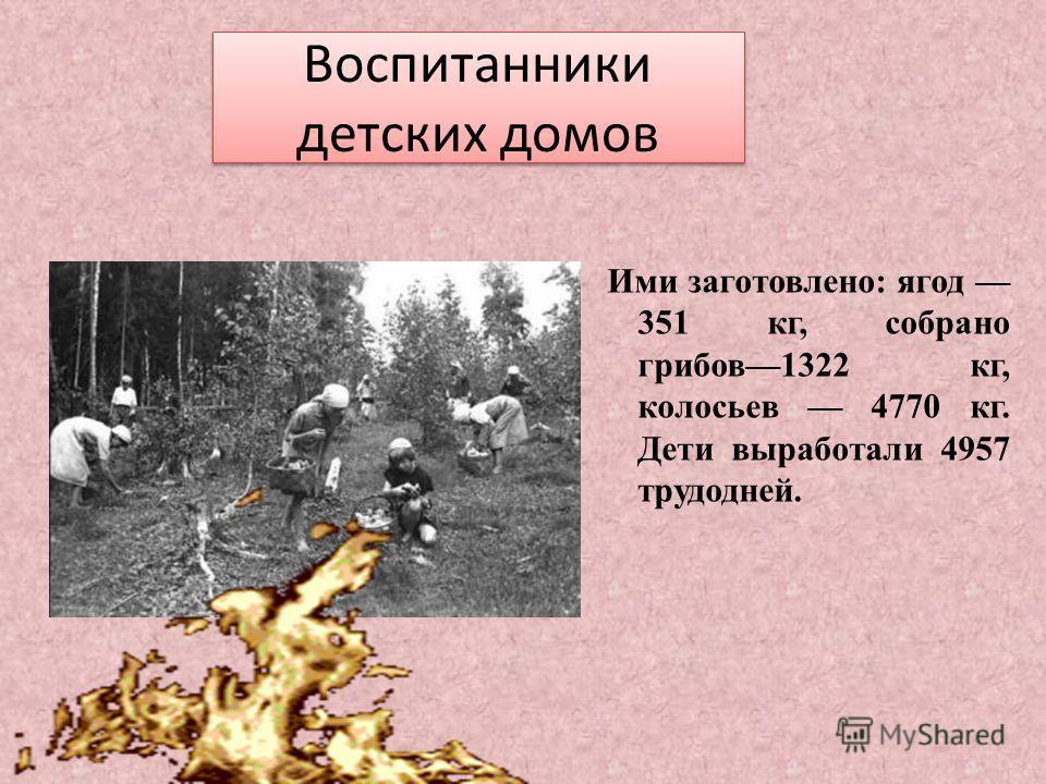 Воспитанники детских домов Ими заготовлено: ягод 351 кг, собрано грибов1322 кг, колосьев 4770 кг. Дети выработали 4957 трудодней.