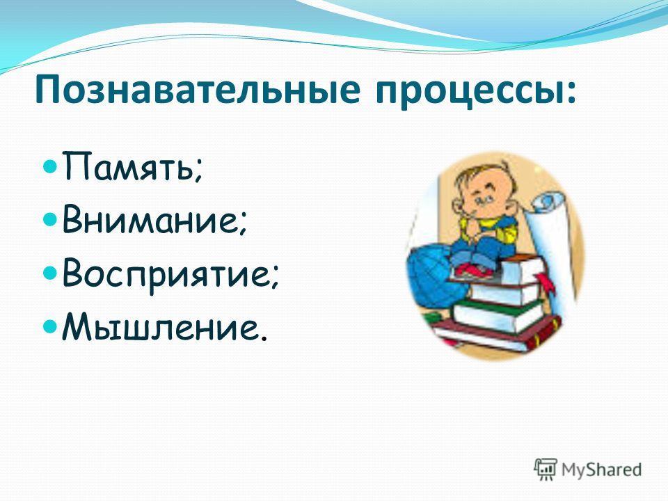 Познавательные процессы: Память; Внимание; Восприятие; Мышление.