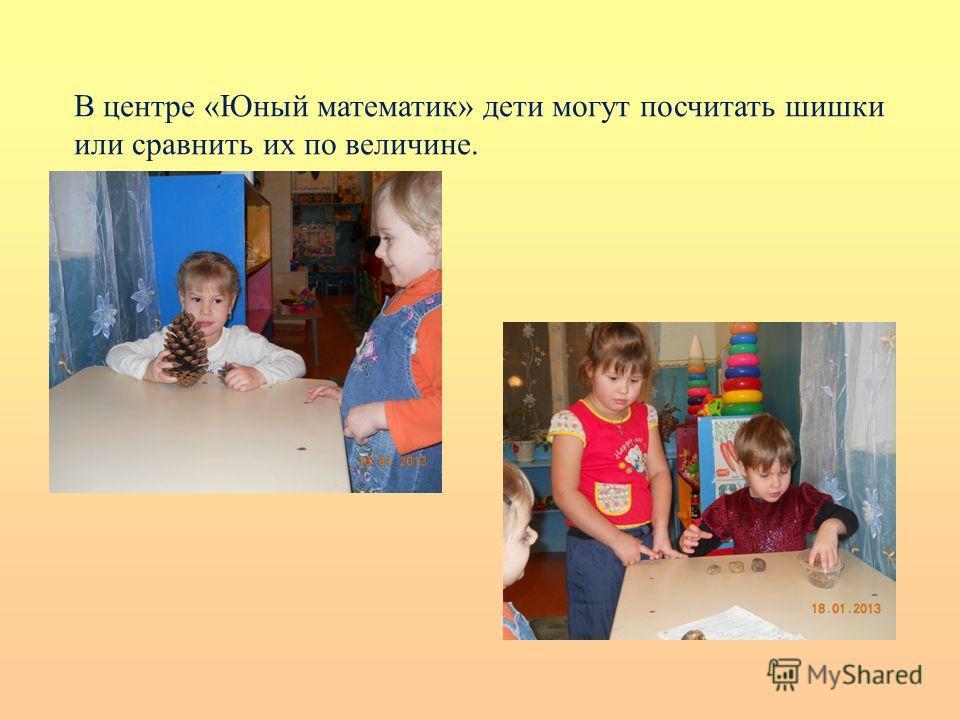 В центре «Юный математик» дети могут посчитать шишки или сравнить их по величине.