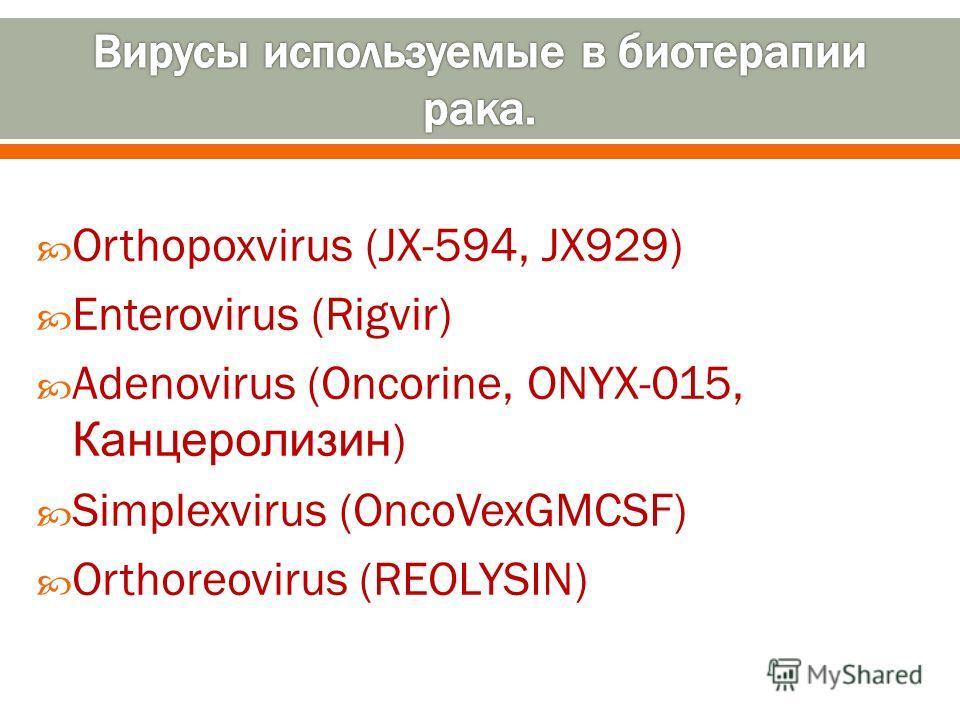 Orthopoxvirus (JX 594, JX929) Enterovirus (Rigvir) Adenovirus (Oncorine, ONYX 015, Канцеролизин ) Simplexvirus (OncoVexGMCSF) Orthoreovirus (REOLYSIN)