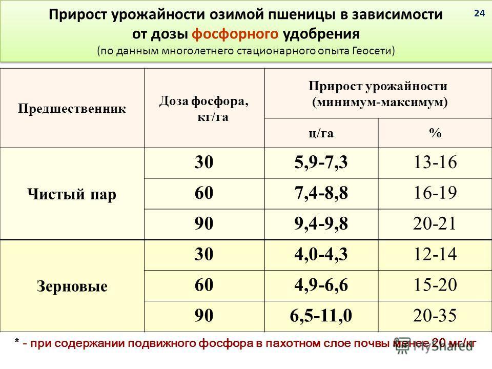 Прирост урожайности озимой пшеницы в зависимости от дозы фосфорного удобрения (по данным многолетнего стационарного опыта Геосети) Предшественник Доза фосфора, кг/га Прирост урожайности (минимум-максимум) ц/га% Чистый пар 305,9-7,313-16 607,4-8,816-1