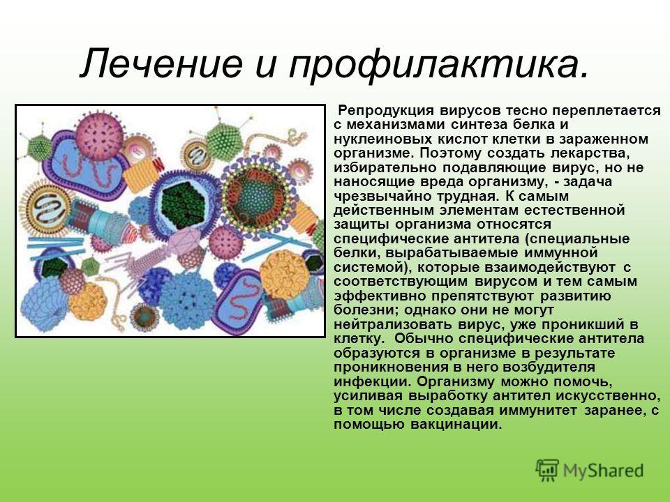 Лечение и профилактика. Репродукция вирусов тесно переплетается с механизмами синтеза белка и нуклеиновых кислот клетки в зараженном организме. Поэтому создать лекарства, избирательно подавляющие вирус, но не наносящие вреда организму, - задача чрезв