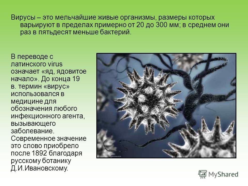 Вирусы – это мельчайшие живые организмы, размеры которых варьируют в пределах примерно от 20 до 300 мм; в среднем они раз в пятьдесят меньше бактерий. В переводе с латинского virus означает «яд, ядовитое начало». До конца 19 в. термин «вирус» использ