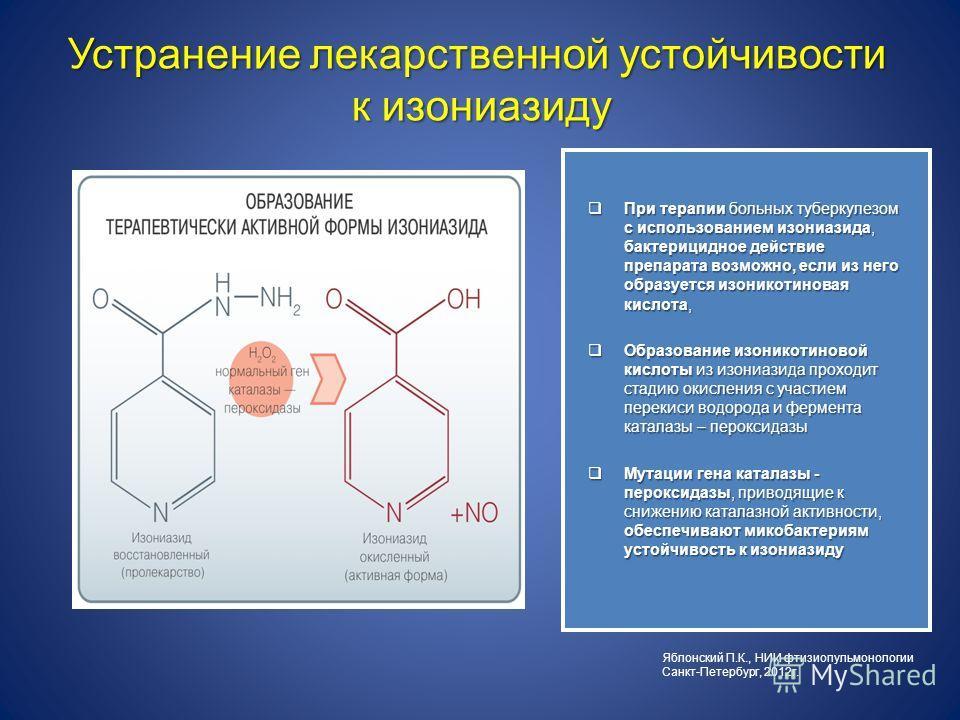 При терапии больных туберкулезом с использованием изониазида, бактерицидное действие препарата возможно, если из него образуется изоникотиновая кислота, При терапии больных туберкулезом с использованием изониазида, бактерицидное действие препарата во
