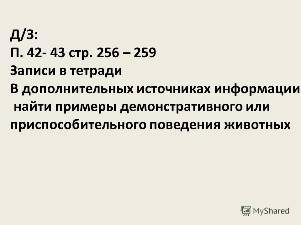 Д/З: П. 42- 43 стр. 256 – 259 Записи в тетради В дополнительных источниках информации найти примеры демонстративного или приспособительного поведения животных