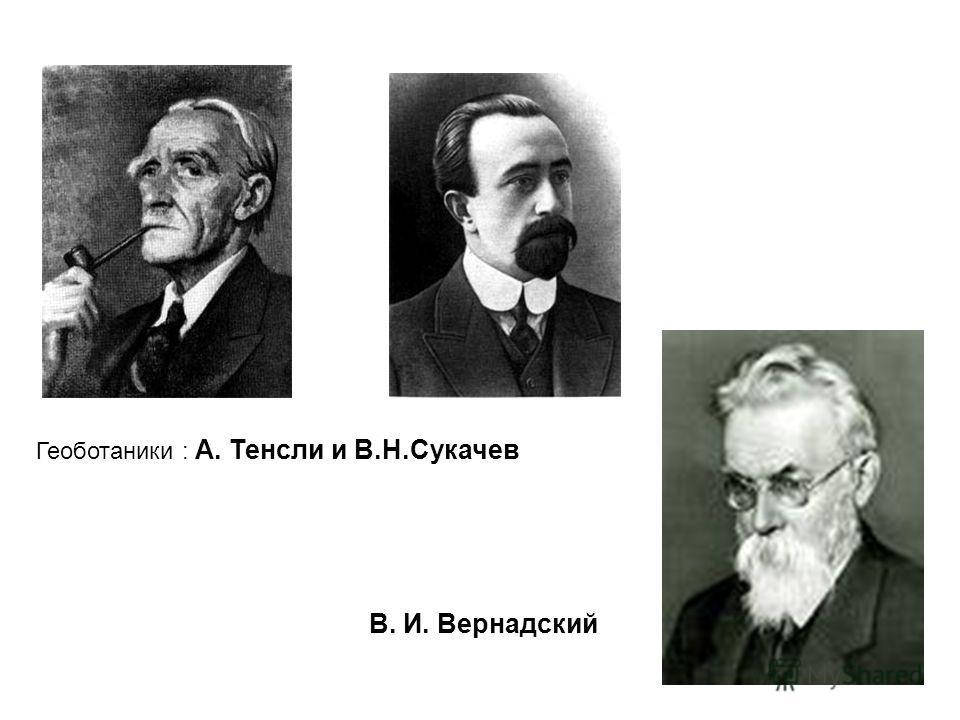 Геоботаники : А. Тенсли и В.Н.Сукачев В. И. Вернадский