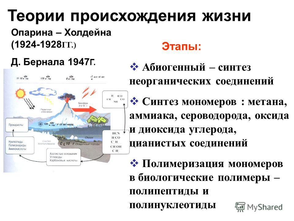 Опарина – Холдейна (1924-1928 ГГ.) Д. Бернала 1947 Г. Этапы: Абиогенный – синтез неорганических соединений Синтез мономеров : метана, аммиака, сероводорода, оксида и диоксида углерода, цианистых соединений Полимеризация мономеров в биологические поли