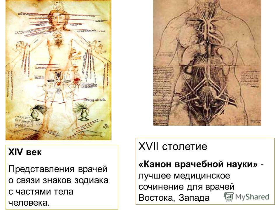 XIV век Представления врачей о связи знаков зодиака с частями тела человека. XVII столетие «Канон врачебной науки» - лучшее медицинское сочинение для врачей Востока, Запада