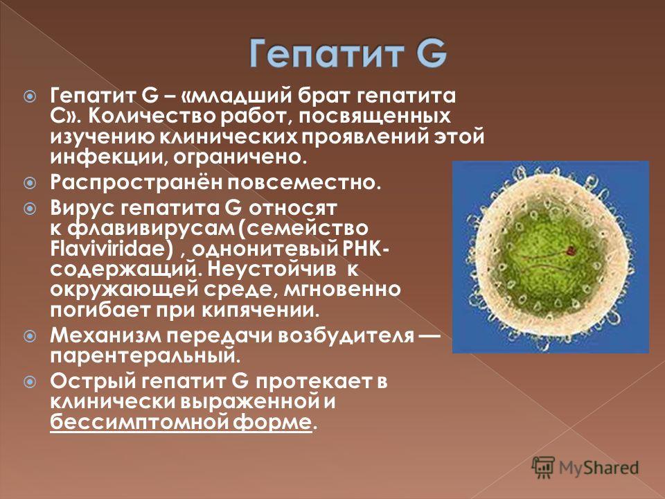 Инструкция к вакцинам против гепатита в