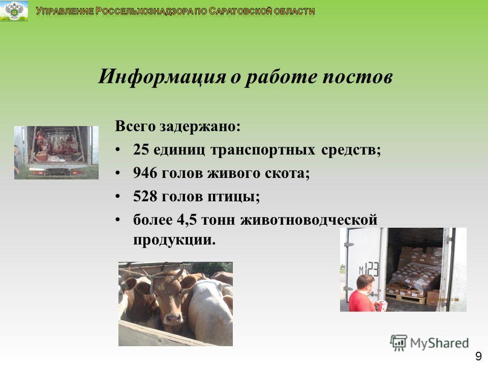 Информация о работе постов Всего задержано: 25 единиц транспортных средств; 946 голов живого скота; 528 голов птицы; более 4,5 тонн животноводческой продукции. 9