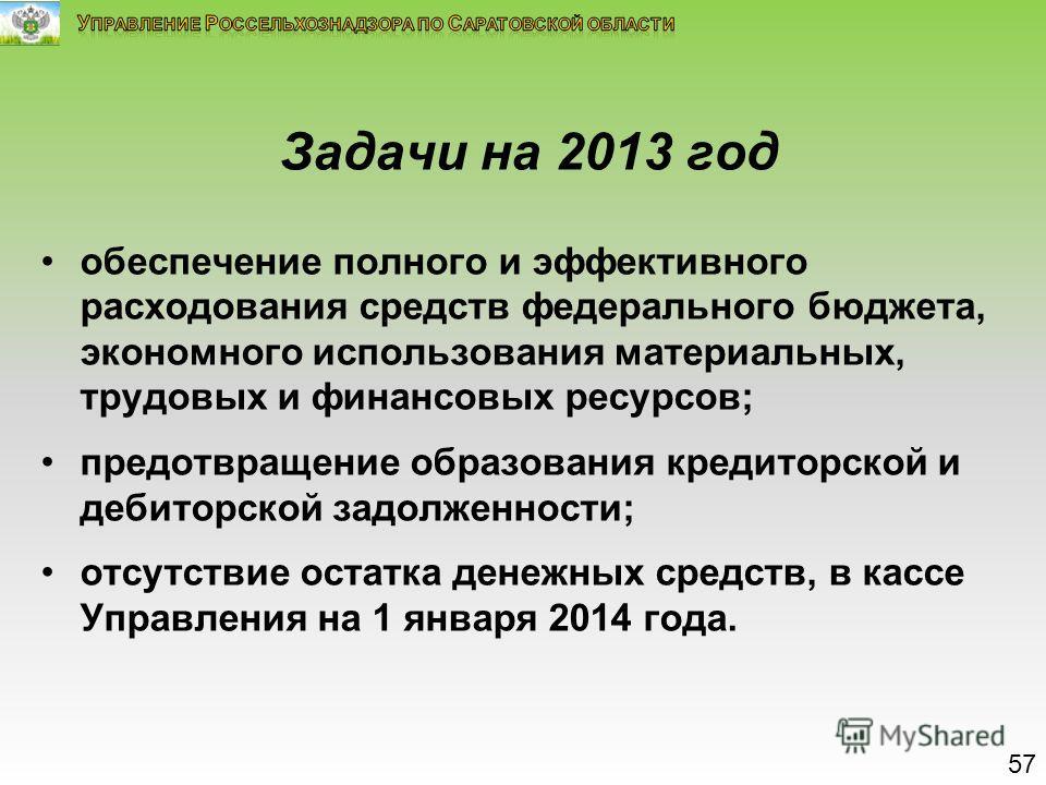 Задачи на 2013 год обеспечение полного и эффективного расходования средств федерального бюджета, экономного использования материальных, трудовых и финансовых ресурсов; предотвращение образования кредиторской и дебиторской задолженности; отсутствие ос