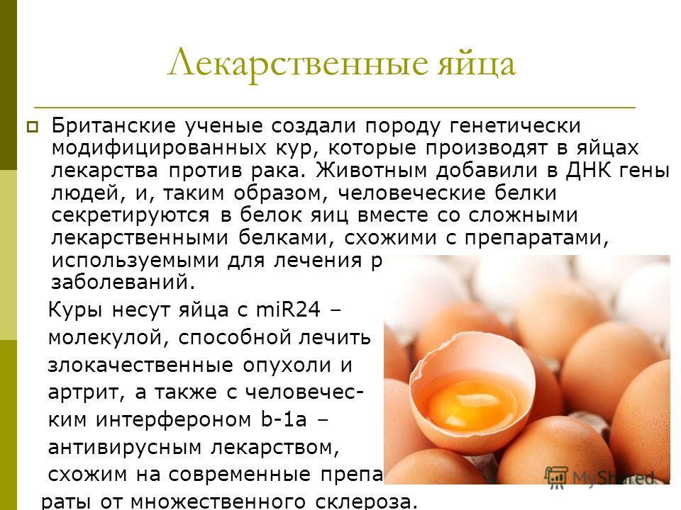 Лекарственные яйца Британские ученые создали породу генетически модифицированных кур, которые производят в яйцах лекарства против рака. Животным добавили в ДНК гены людей, и, таким образом, человеческие белки секретируются в белок яиц вместе со сложн