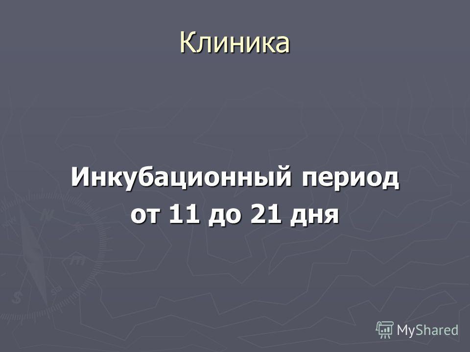Клиника Инкубационный период от 11 до 21 дня