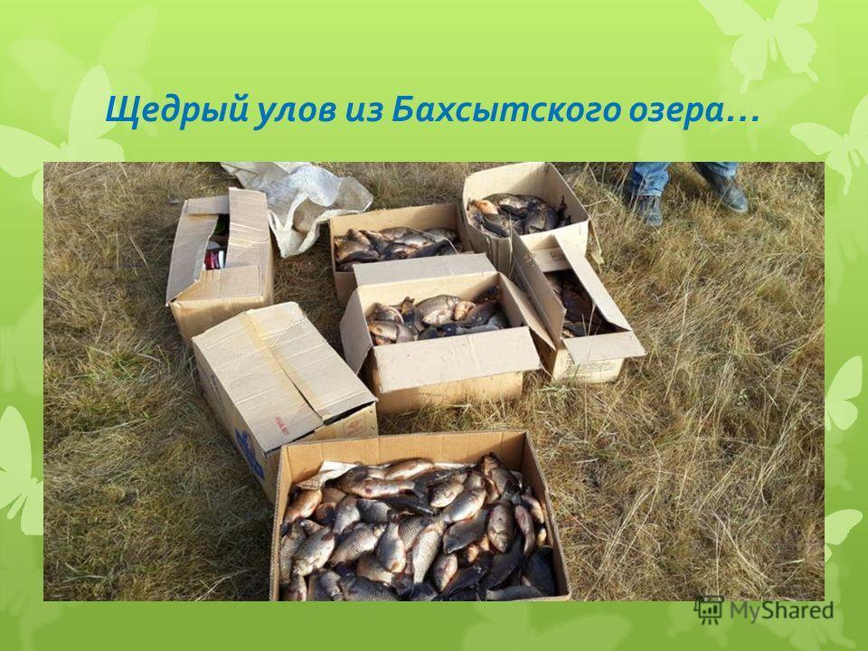 Щедрый улов из Бахсытского озера…