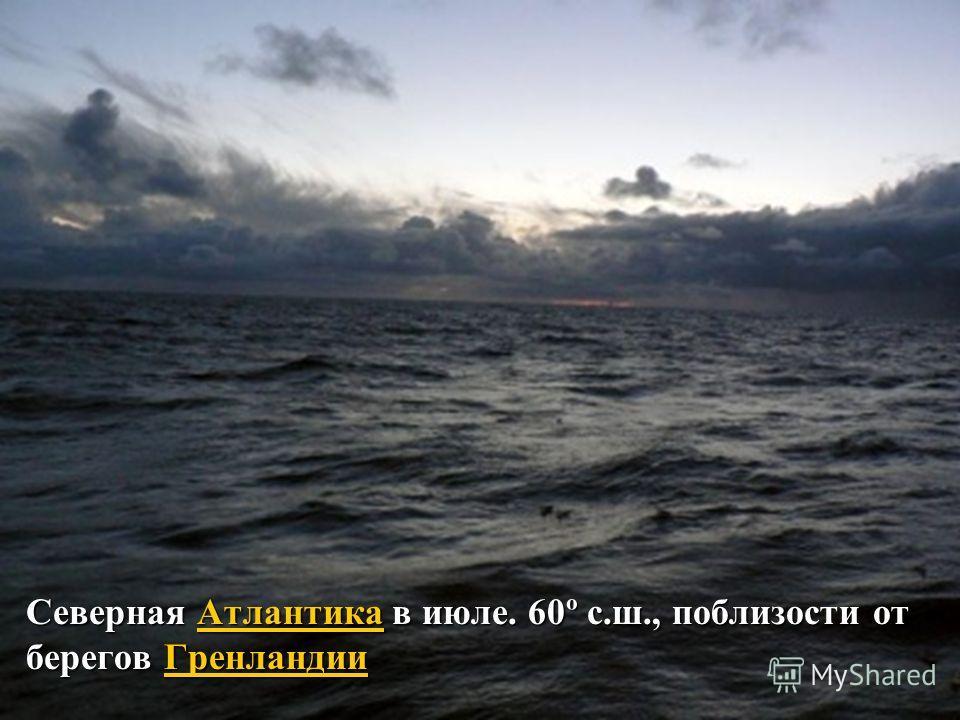 Северная Атлантика в июле. 60º с.ш., поблизости от берегов Гренландии АтлантикаГренландииАтлантикаГренландии