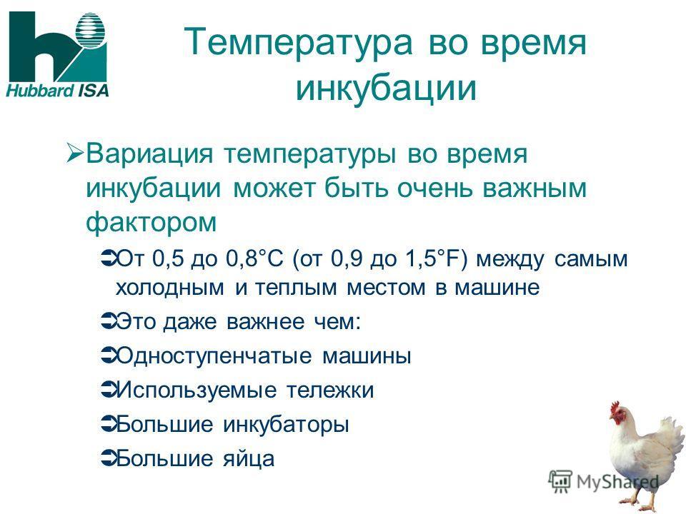 Температура во время инкубации Вариация температуры во время инкубации может быть очень важным фактором От 0,5 до 0,8°C (от 0,9 до 1,5°F) между самым холодным и теплым местом в машине Это даже важнее чем: Одноступенчатые машины Используемые тележки Б