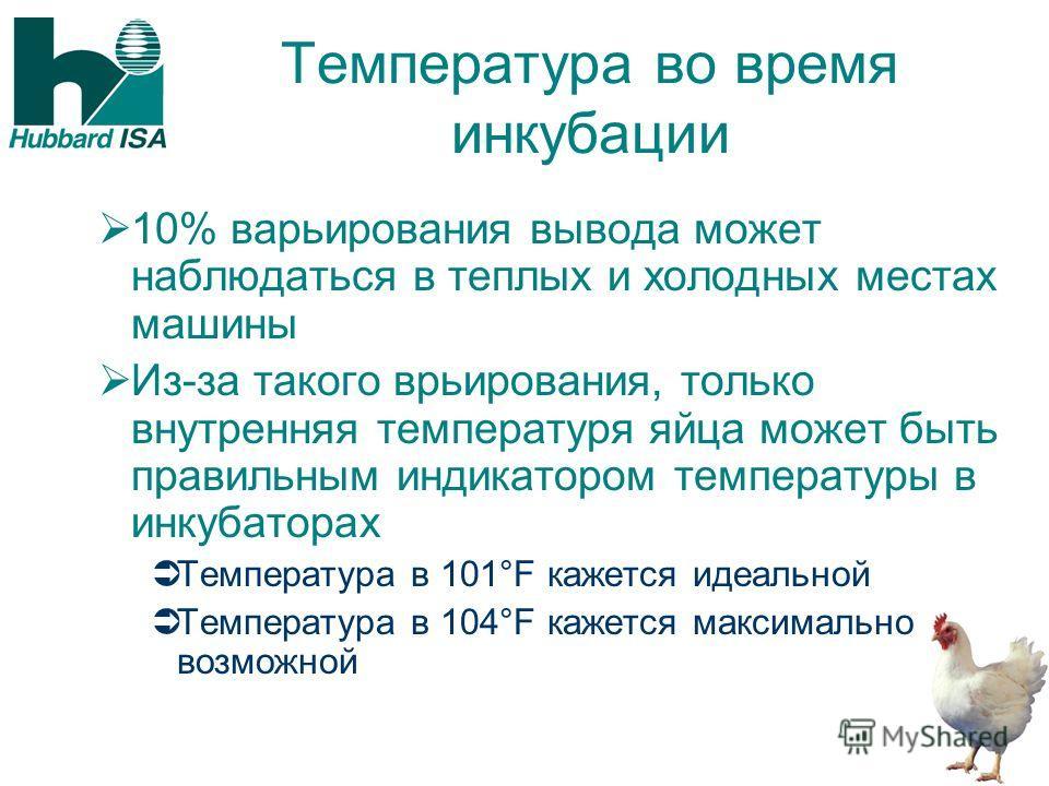 Температура во время инкубации 10% варьирования вывода может наблюдаться в теплых и холодных местах машины Из-за такого врьирования, только внутренняя температуря яйца может быть правильным индикатором температуры в инкубаторах Температура в 101°F ка