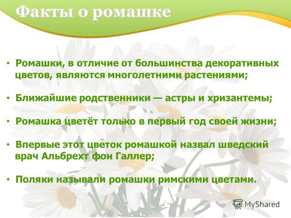 Факты о ромашке Ромашки, в отличие от большинства декоративных цветов, являются многолетними растениями; Ближайшие родственники астры и хризантемы; Ромашка цветёт только в первый год своей жизни; Впервые этот цветок ромашкой назвал шведский врач Альб