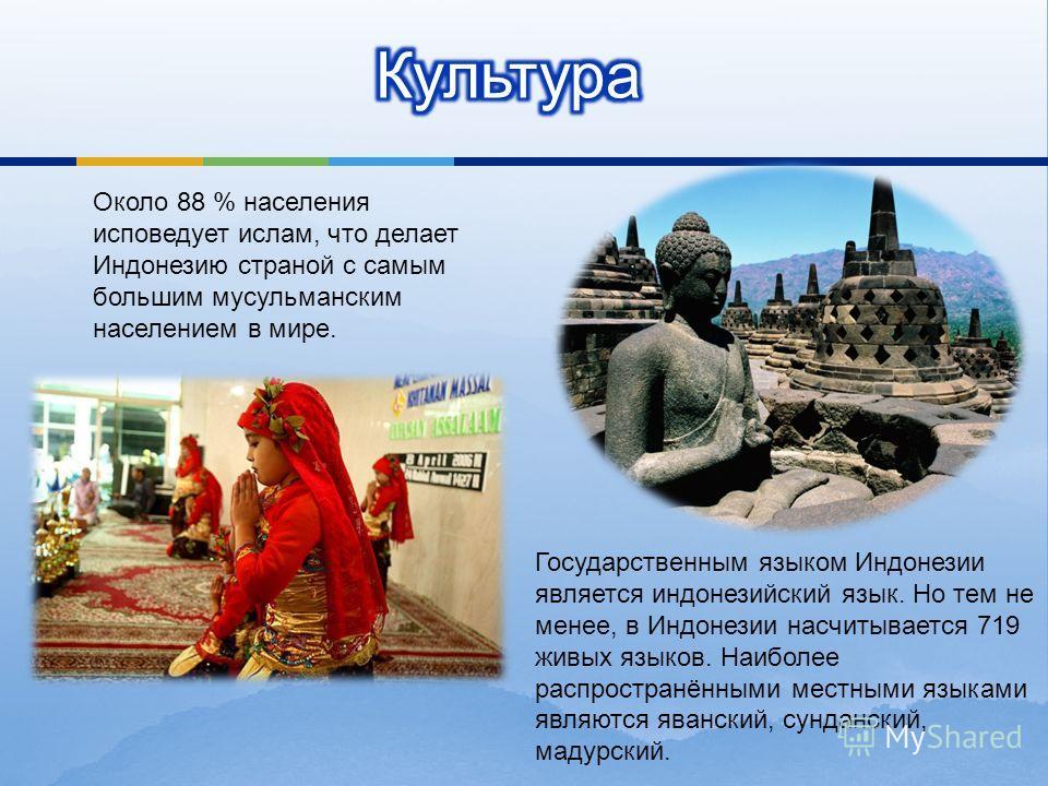 Около 88 % населения исповедует ислам, что делает Индонезию страной с самым большим мусульманским населением в мире. Государственным языком Индонезии является индонезийский язык. Но тем не менее, в Индонезии насчитывается 719 живых языков. Наиболее р