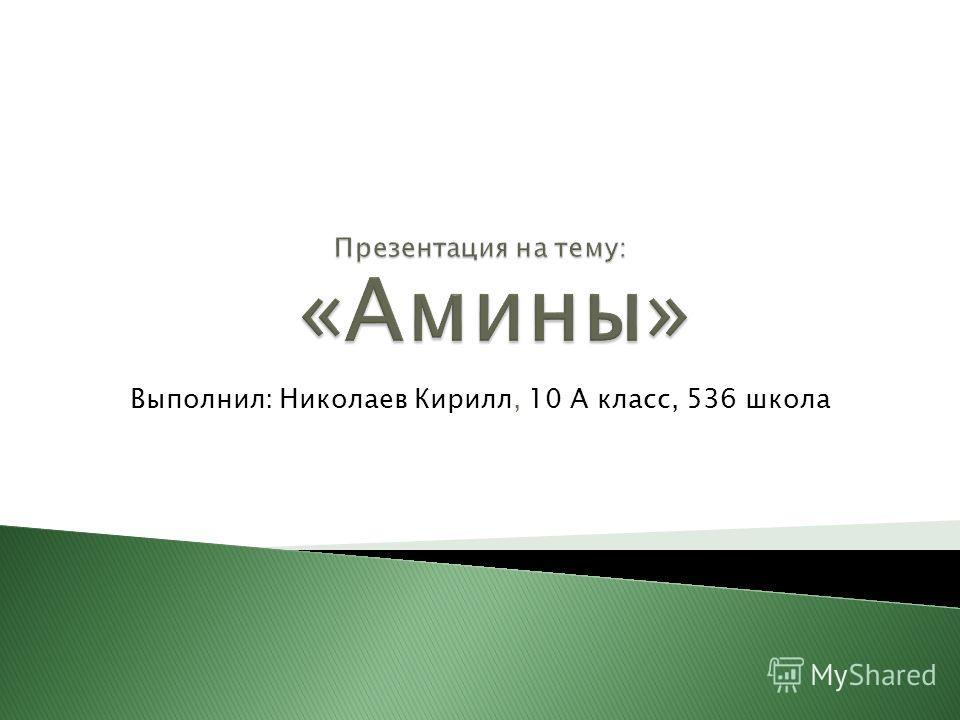 Выполнил: Николаев Кирилл, 10 А класс, 536 школа