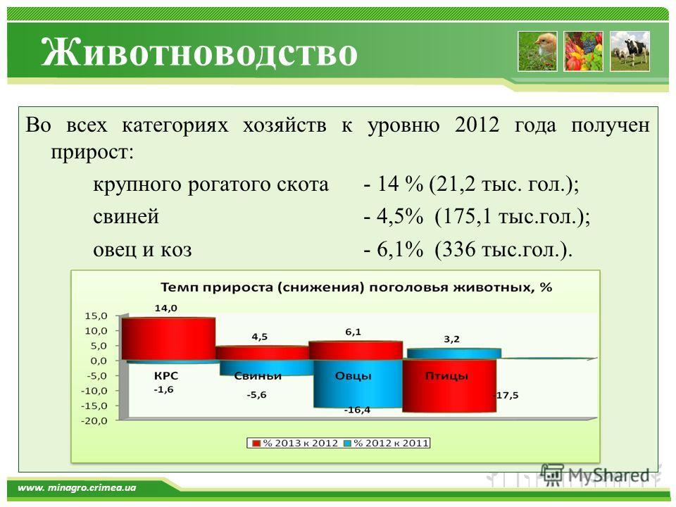 www.themegallery.com www. minagro.crimea.ua Во всех категориях хозяйств к уровню 2012 года получен прирост: крупного рогатого скота- 14 % (21,2 тыс. гол.); свиней- 4,5% (175,1 тыс.гол.); овец и коз- 6,1% (336 тыс.гол.). Животноводство