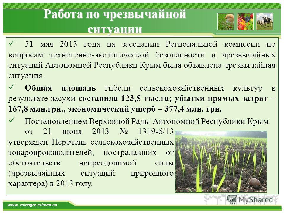 www.themegallery.com www. minagro.crimea.ua Работа по чрезвычайной ситуации 31 мая 2013 года на заседании Региональной комиссии по вопросам техногенно-экологической безопасности и чрезвычайных ситуаций Автономной Республики Крым была объявлена чрезвы
