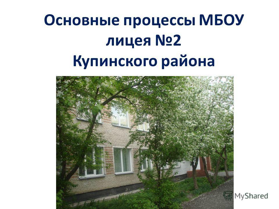 Основные процессы МБОУ лицея 2 Купинского района