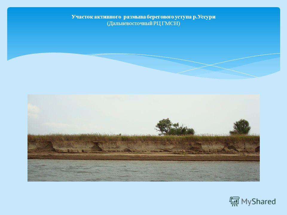 Участок активного размыва берегового уступа р.Уссури (Дальневосточный РЦ ГМСН)