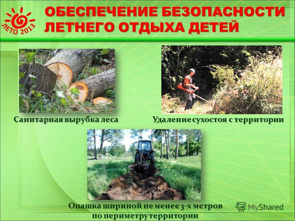 ОБЕСПЕЧЕНИЕ БЕЗОПАСНОСТИ ЛЕТНЕГО ОТДЫХА ДЕТЕЙ Санитарная вырубка леса Удаление сухостоя с территории Опашка шириной не менее 3-х метров по периметру территории