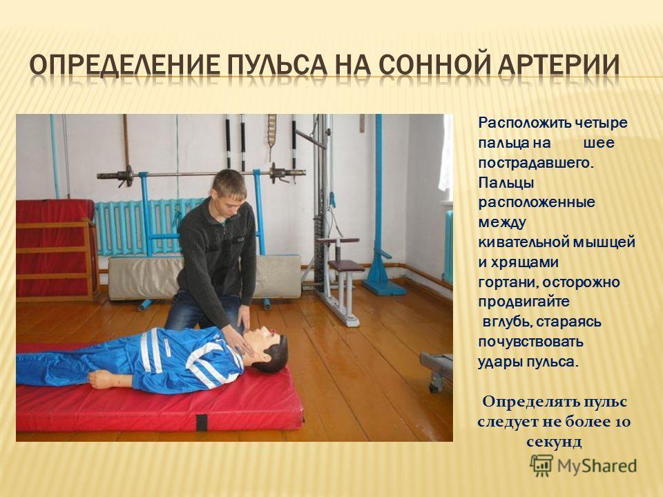 Расположить четыре пальца на шее пострадавшего. Пальцы расположенные между кивательной мышцей и хрящами гортани, осторожно продвигайте вглубь, стараясь почувствовать удары пульса. Определять пульс следует не более 10 секунд