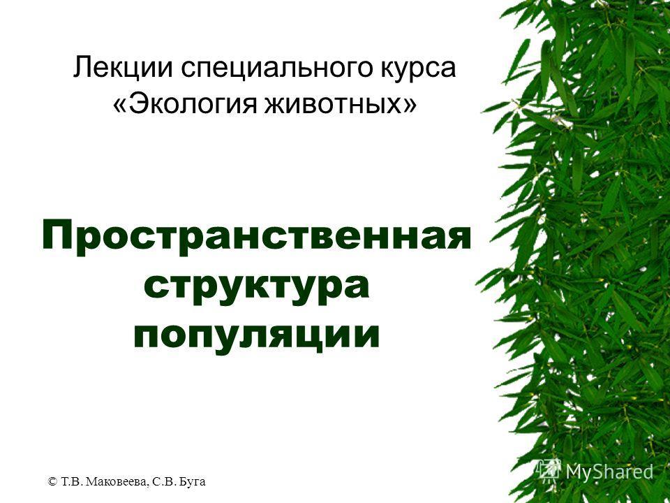 © Т.В. Маковеева, С.В. Буга Пространственная структура популяции Лекции специального курса «Экология животных»