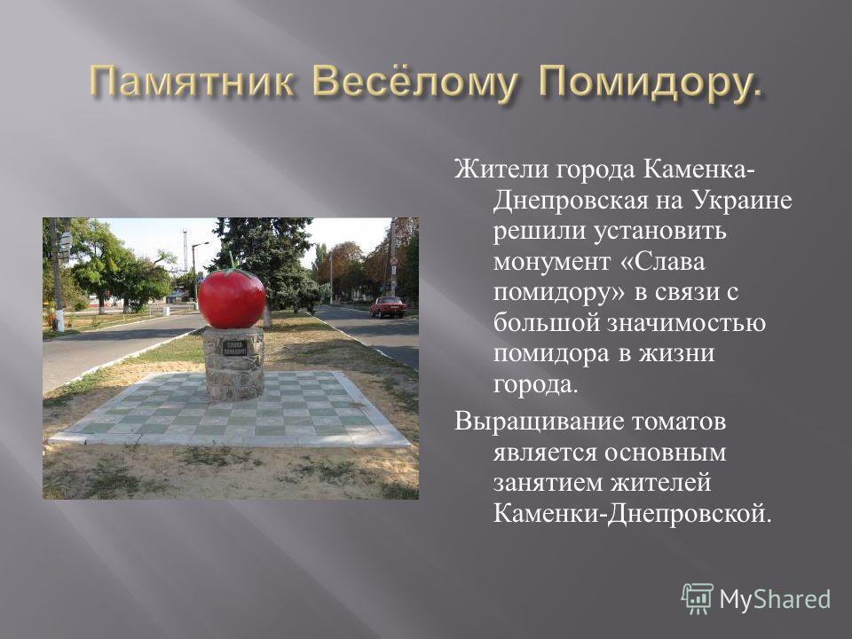 Жители города Каменка - Днепровская на Украине решили установить монумент « Слава помидору » в связи с большой значимостью помидора в жизни города. Выращивание томатов является основным занятием жителей Каменки - Днепровской.
