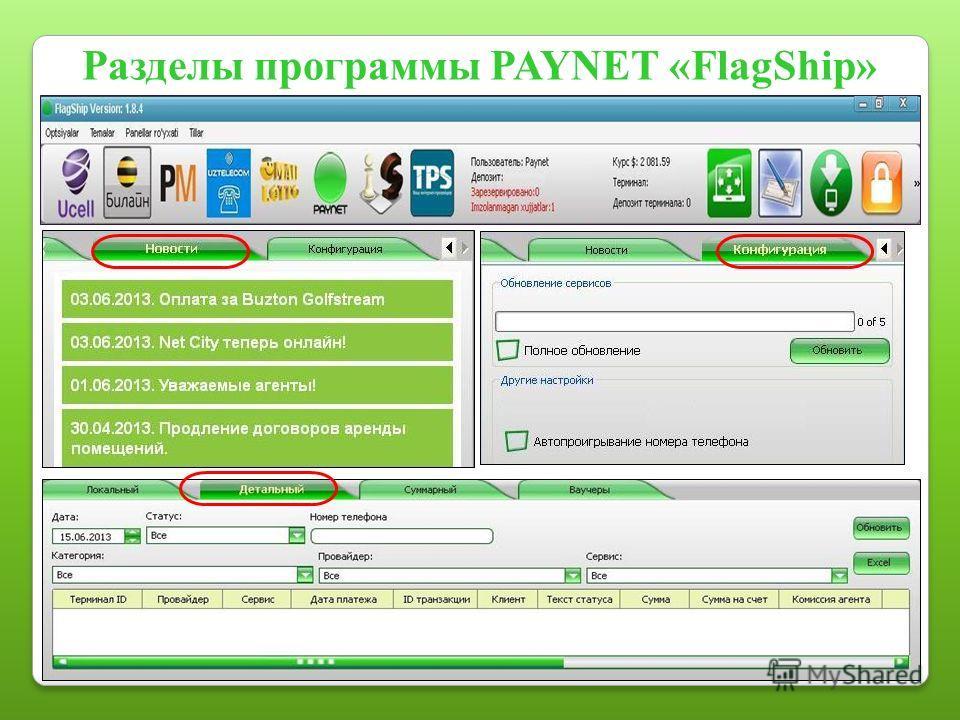Разделы программы PAYNET «FlagShip»